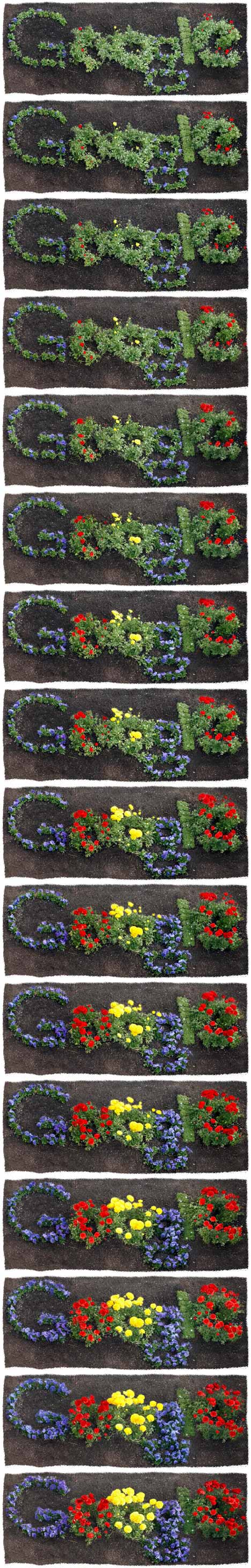 Still shots of Earth Day 2012 Google Doodle