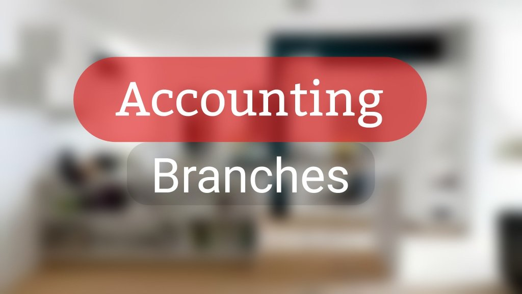Types or Sub-fields of Accounting