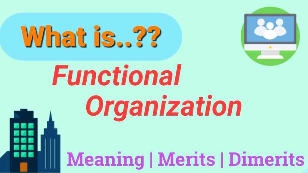 Functional Organizations: Meaning & Structure with Merits and Demerits