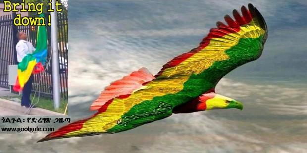 eagle flag ethiopian
