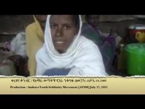 amhara sterilization