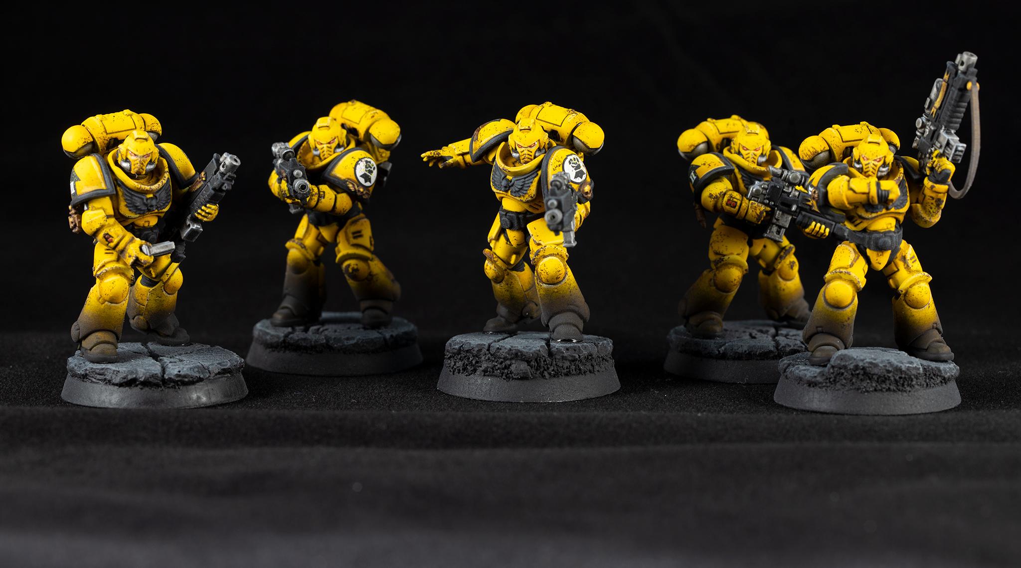 Imperial Fist Intercessors