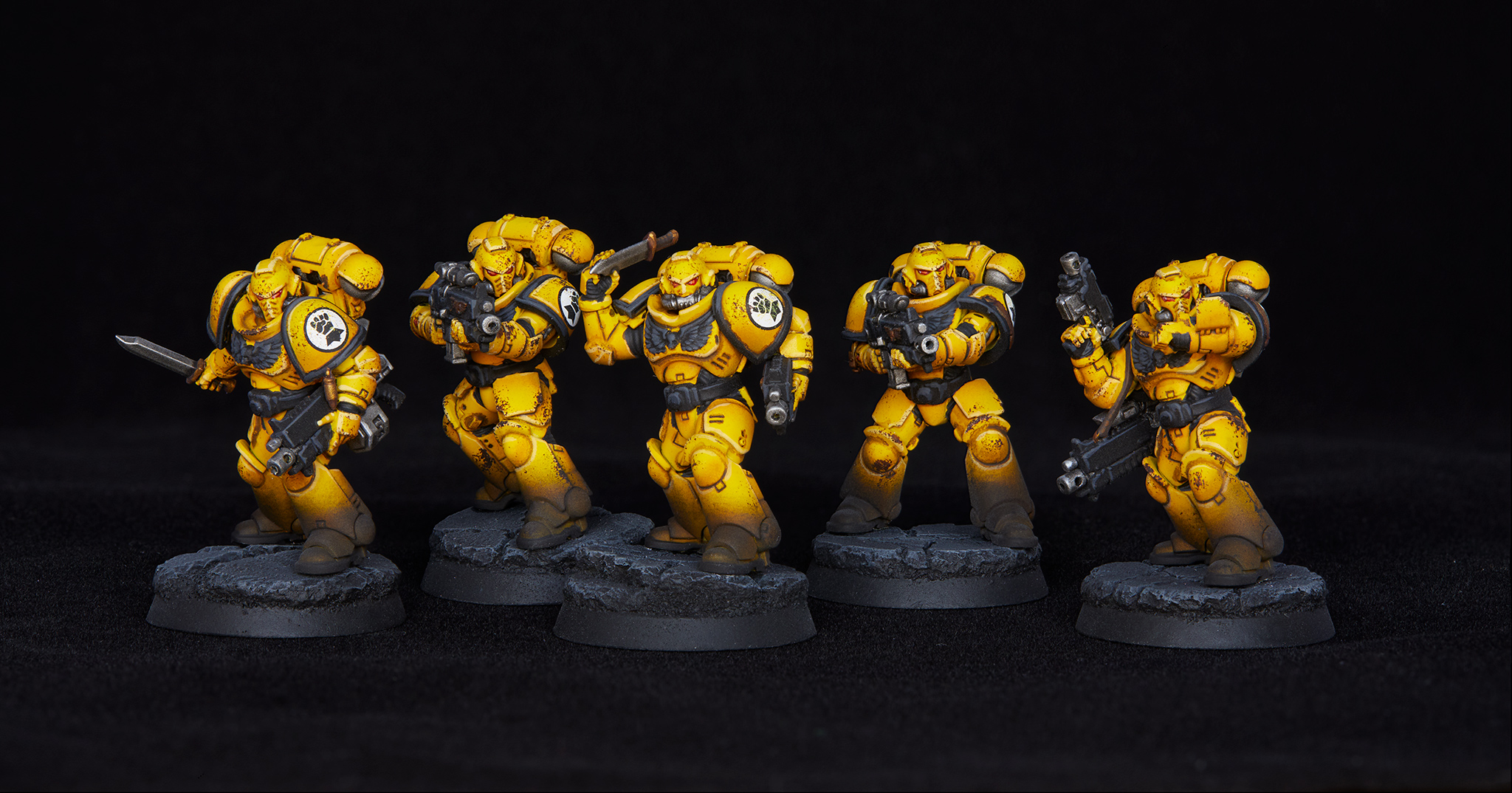 Imperial Fist Intercessors
