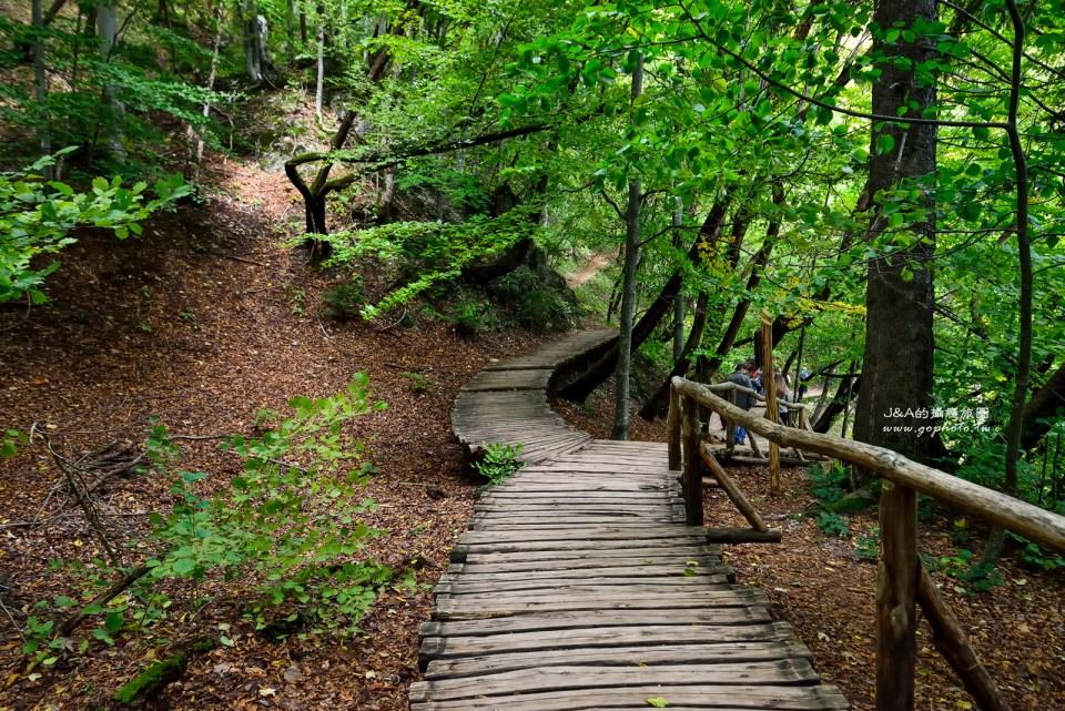 十六湖國家公園幾乎不使用過於人工設施,頂多就地取材,用木頭鋪棧道,讓想來這裡享受大自然的旅人能更接近園區內的一花一草