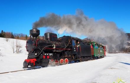 Стало известно расписание поездов на знаменитой Бещадской лесной узкоколейке