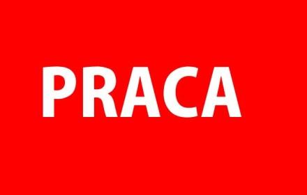 Вакансии на польских сайтах за первую неделю мая
