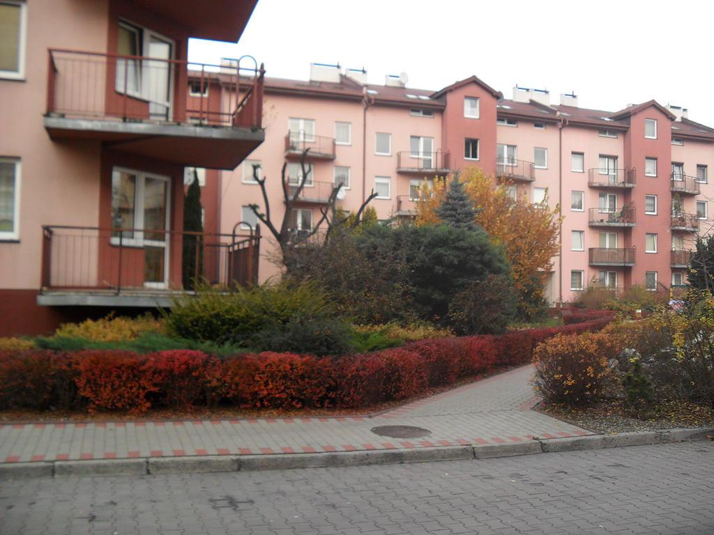 Цены на аренду квартиры в августе в Польше. Исследование Bankier