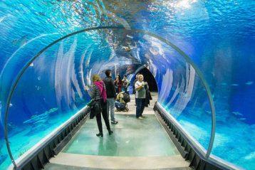 Зоопарки у Польщі: захоплива подорож по усьому світу