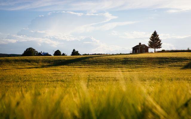 farmland bargain sale