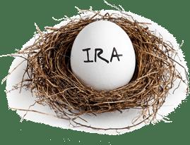 Ira egg in nest