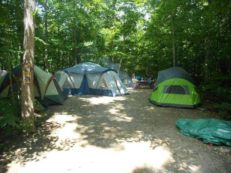 Campsite and tents in our forest camping area at Gordon's Park, Manitoulin Island