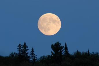 Stargazing, Manitoulin Island, Astronomy Nights