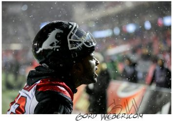 greycup1050108