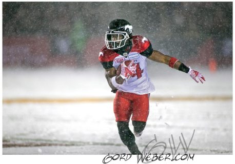 greycup1050637