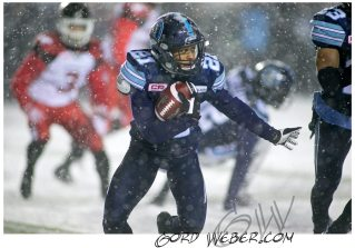 greycup1050874