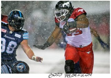 greycup1050937