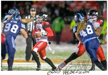 greycup1052597