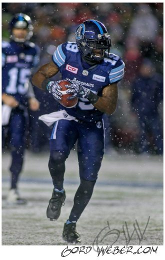 greycup1052681