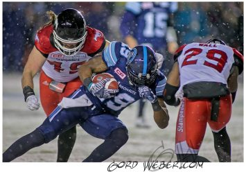 greycup1052688