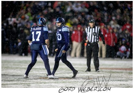 greycup1052763