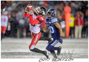 greycup1052839