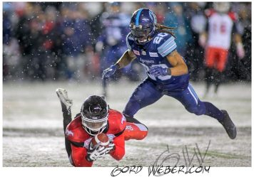 greycup1052843