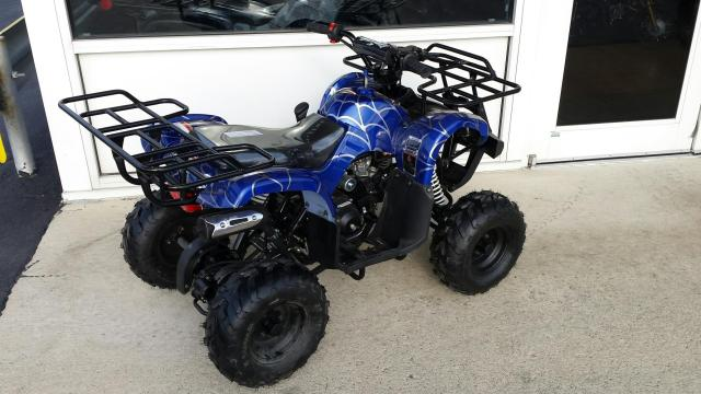 125cc Fully Auto 3125r ATV w/ Reverse (Back View)