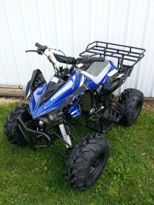 125cc Youth Sport Utility Quad Big Wheel Blue ATV (Front View)