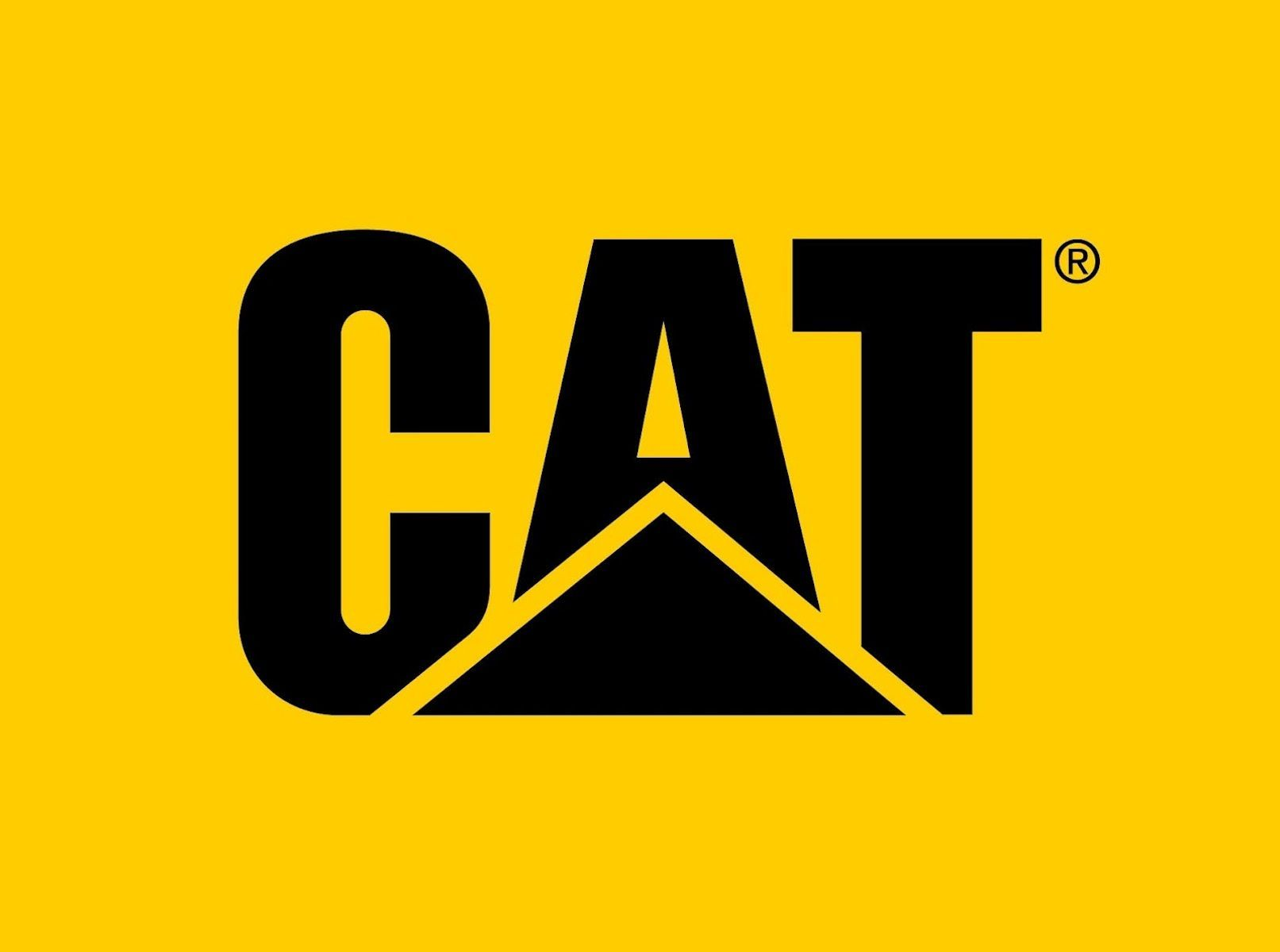 cat-eyewear