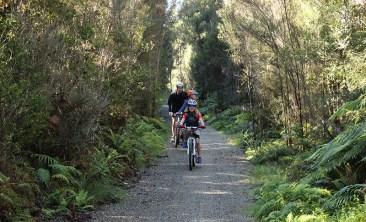 Lake Kaniere West Coast Wilderness Trail