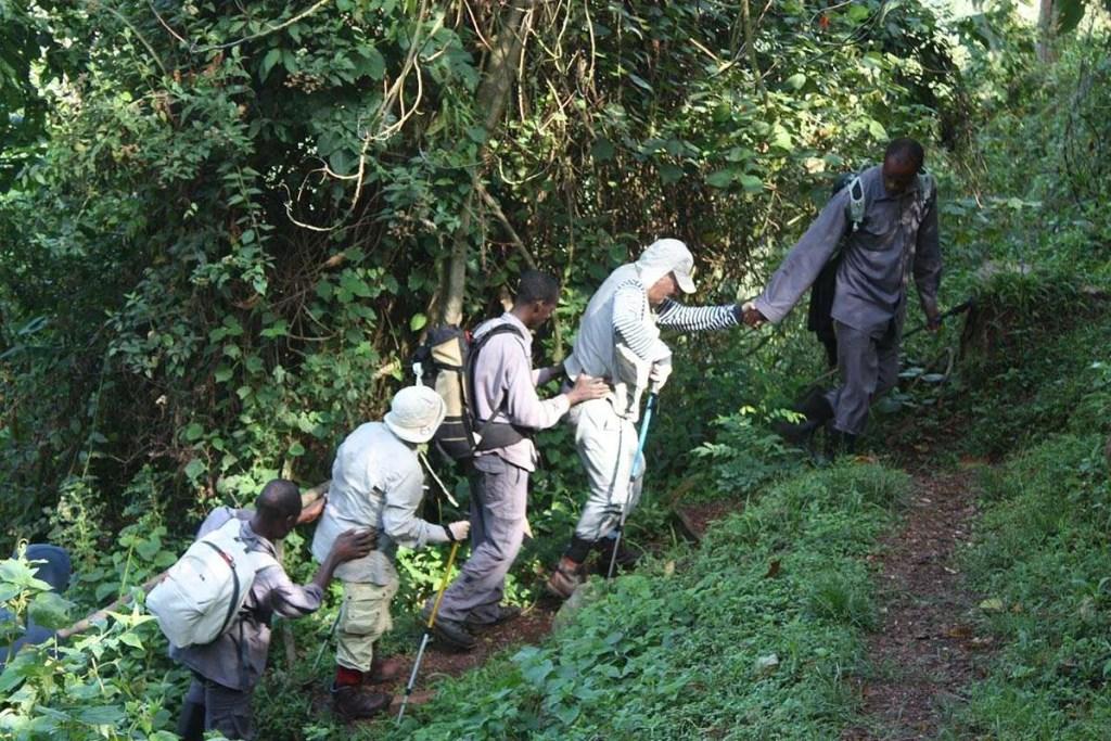 Porters in Bwindi - Gorilla Tourism