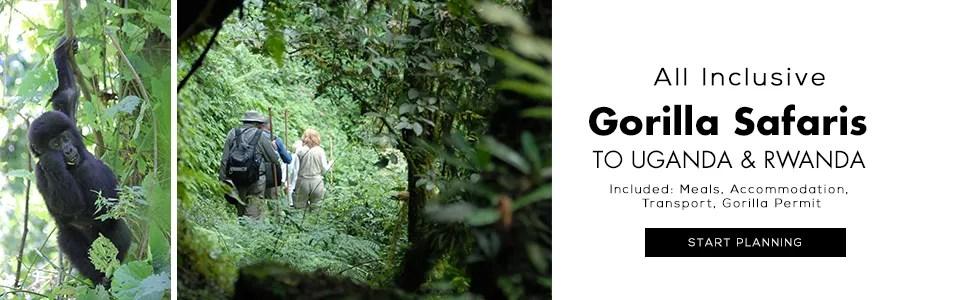 Gorilla Tours in Uganda and Rwanda