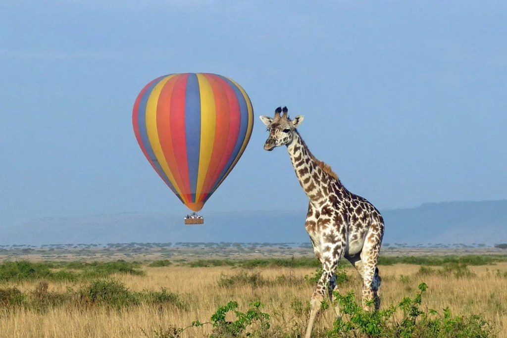 Balloon safaris in uganda