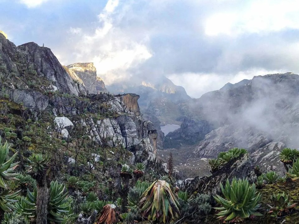 The mysterious Rwenzori Mountains National Park