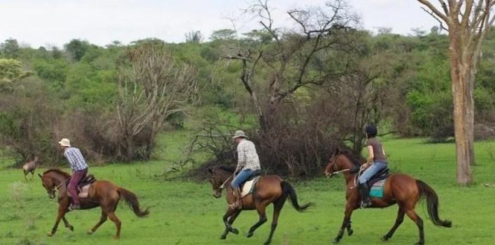 Horseback Riding in Lake Mburo National Park Uganda