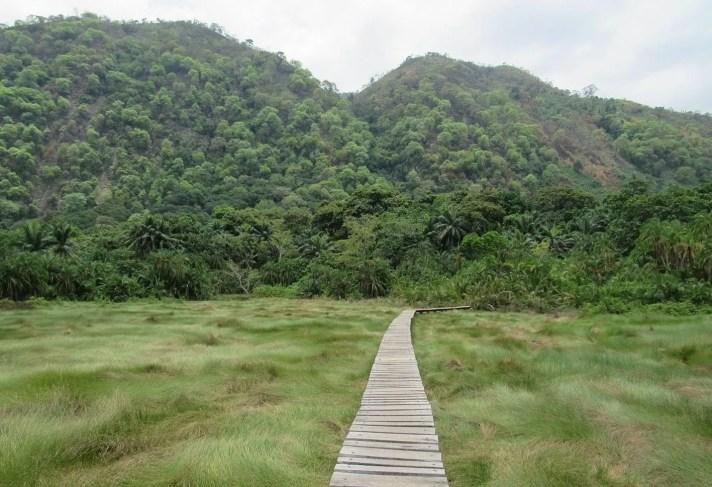 12Best birding spots in Uganda