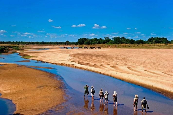 safari destinations in Africa