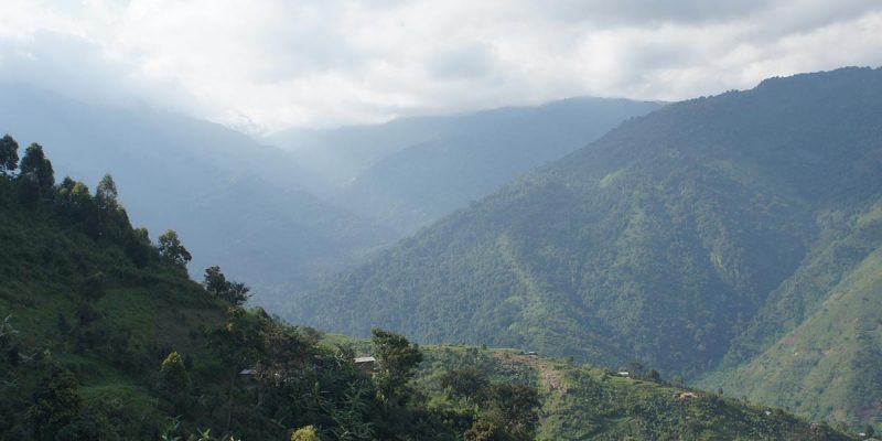Hiking Rwenzori Mountains Safari - Rwenzori Mountains National Park