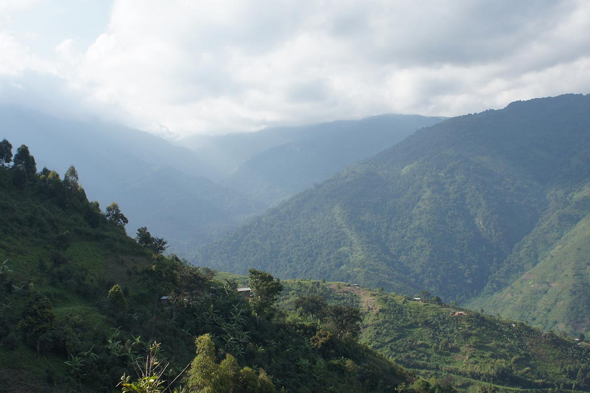 Image result for Uganda - Rwenzori Drugar