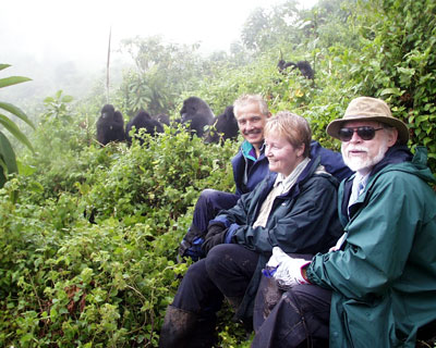gorilla tracking and serengeti migration safari