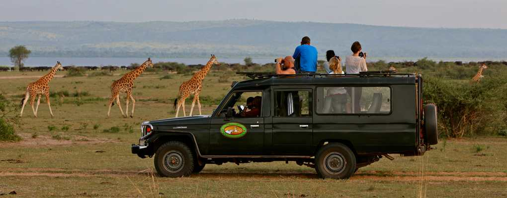 Paraa Safari Lodge game drive