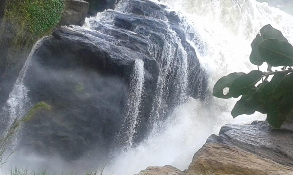 Murchison Falls - Gorillas and Wildlife Safaris
