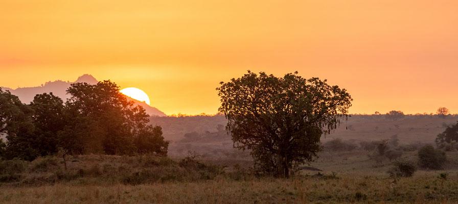 Sunrise in Kidepo national park safari