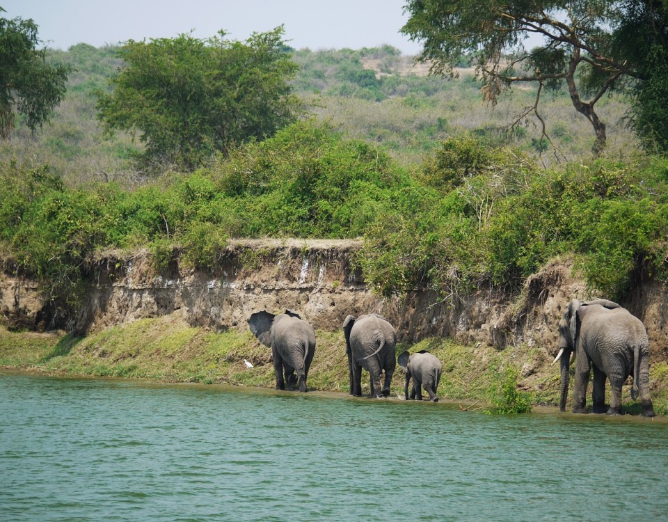 Top destinations in uganda