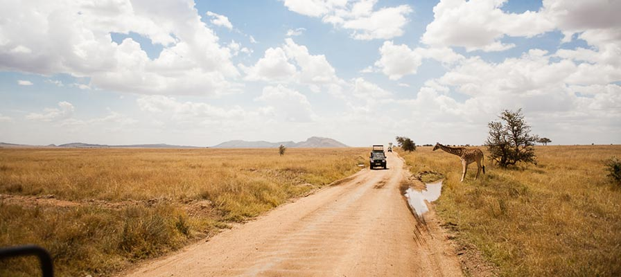 16 Days Best Big Game Safari in Uganda