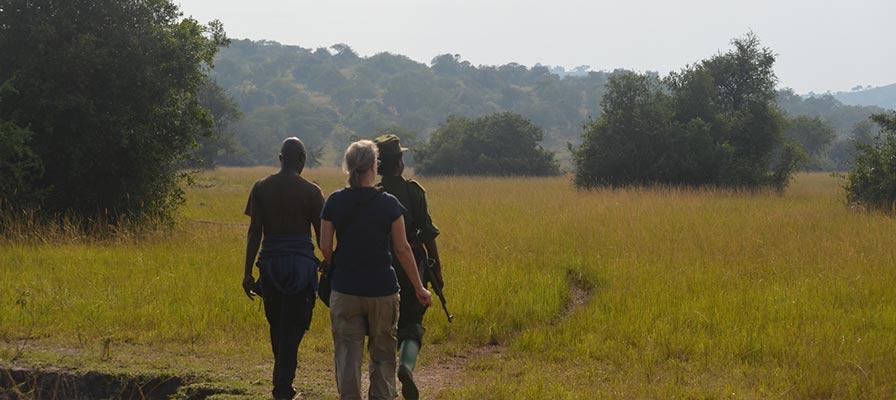 Walking safari in the park