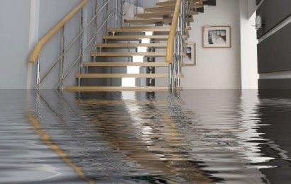 Reasons for hiring a water damage restoration company