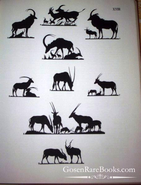 Mochi, Ugo, and Carter, T. Donald, Hoofed Mammals of the World
