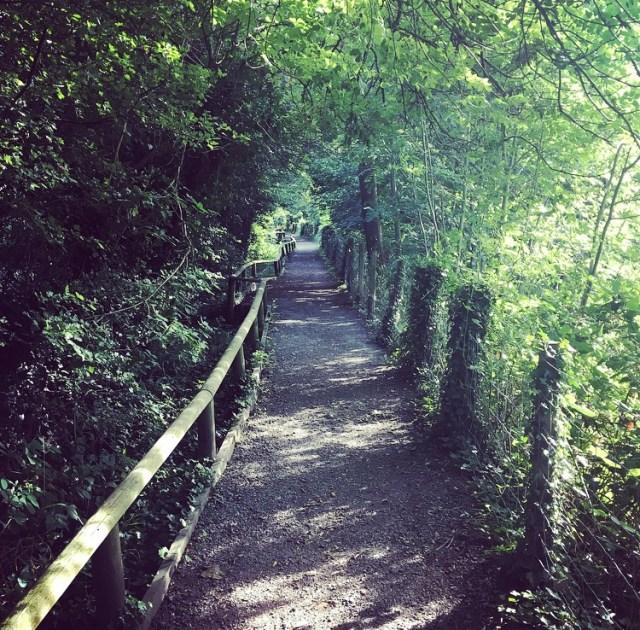 Nicky Nook Millennium Pathway