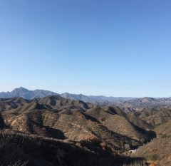 day-3-tree-hills